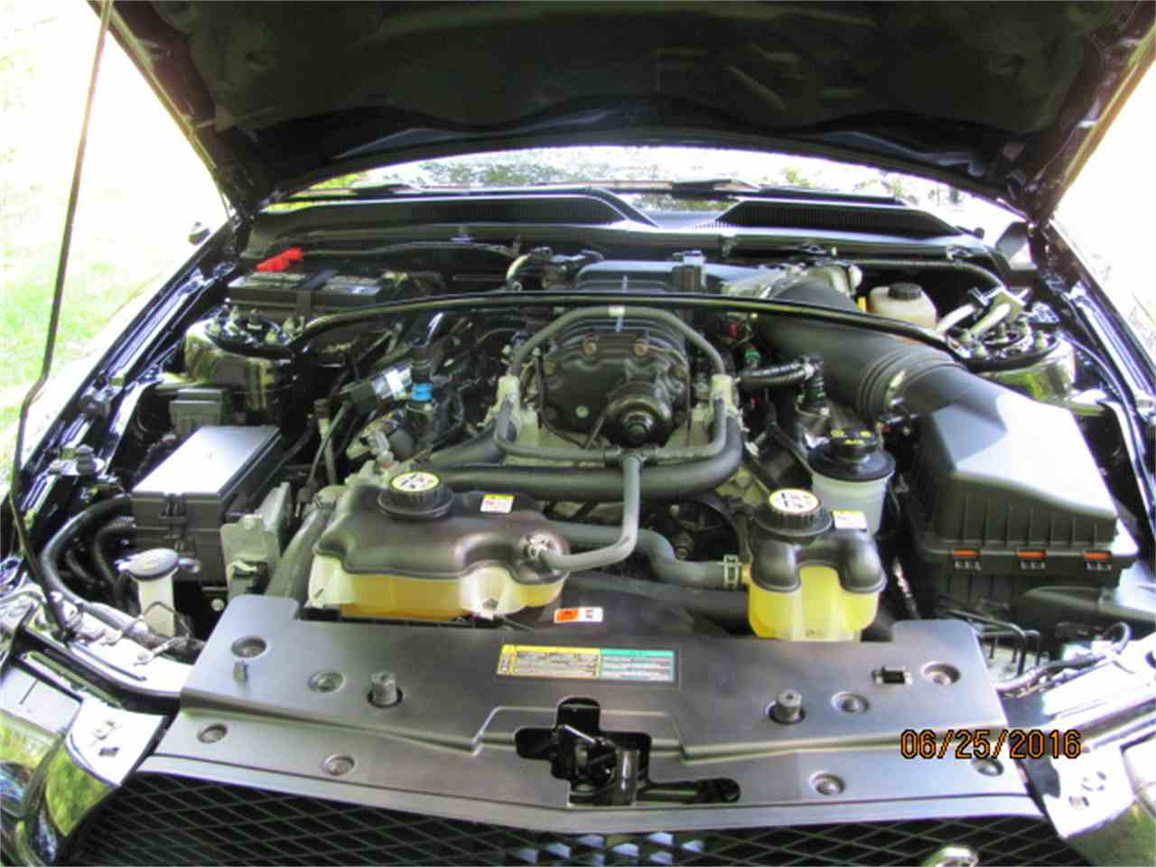 Large Picture of '07 GT500 - IWNJ