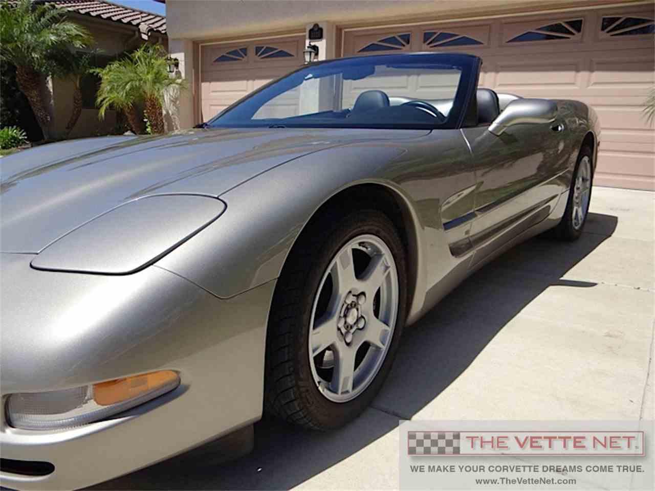 Large Picture of '98 Corvette - IWQP