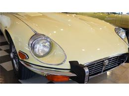 Picture of '73 E-Type - IY79