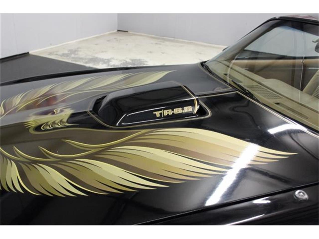Large Picture of '79 Pontiac Firebird Trans Am located in North Carolina - $22,000.00 - IYHT