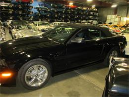 Picture of '07 Mustang - IYW6
