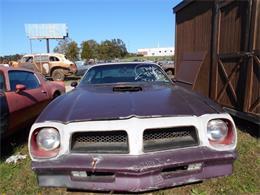 Picture of '76 Pontiac Firebird Trans Am located in South Carolina - J1NO