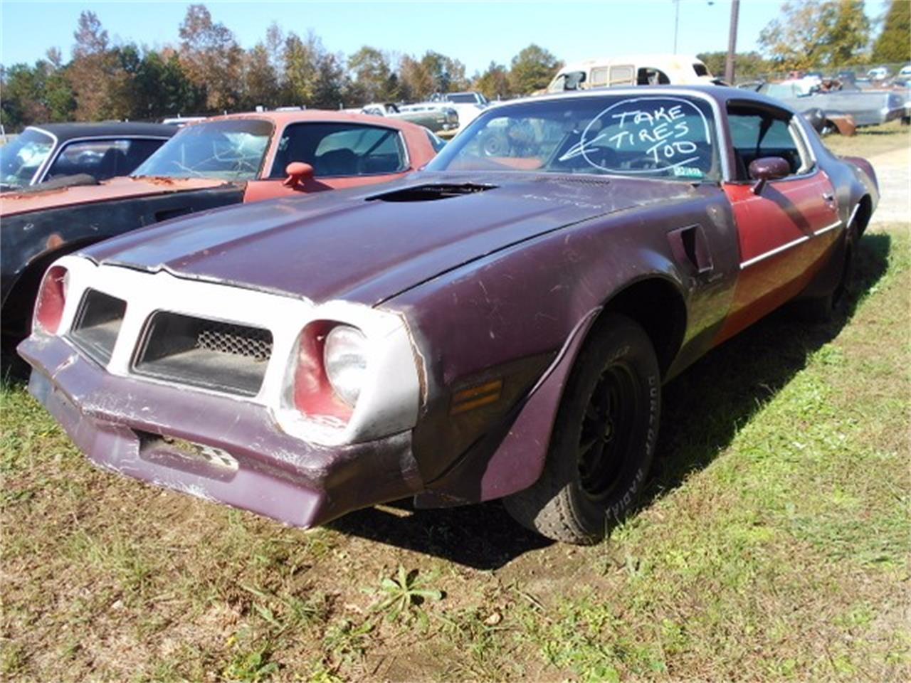 Large Picture of '76 Firebird Trans Am - J1NO