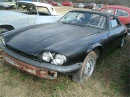Picture of 1978 Jaguar XJ located in South Carolina - J1OO