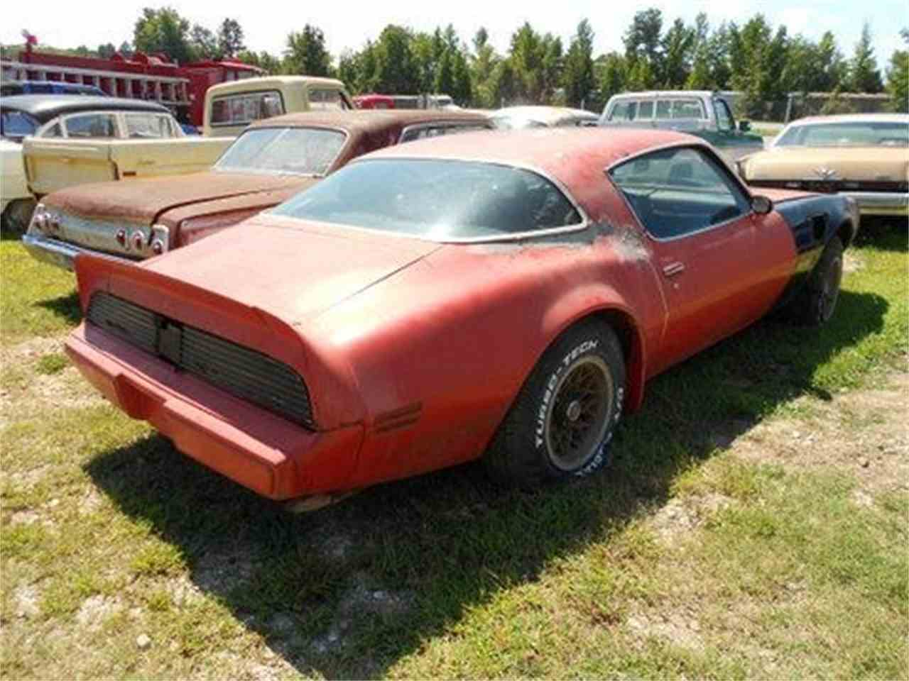 Large Picture of '79 Firebird Trans Am - J1OP