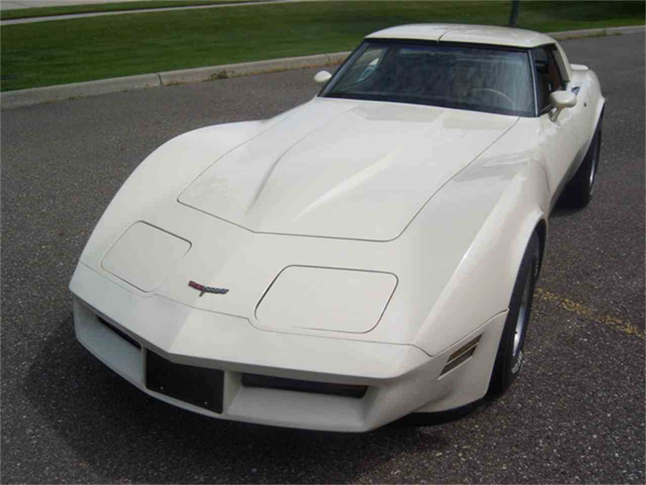 Large Picture of 1981 Chevrolet Corvette located in Fort Myers/ Macomb, MI Florida - $9,900.00 Offered by More Muscle Cars - J2I3