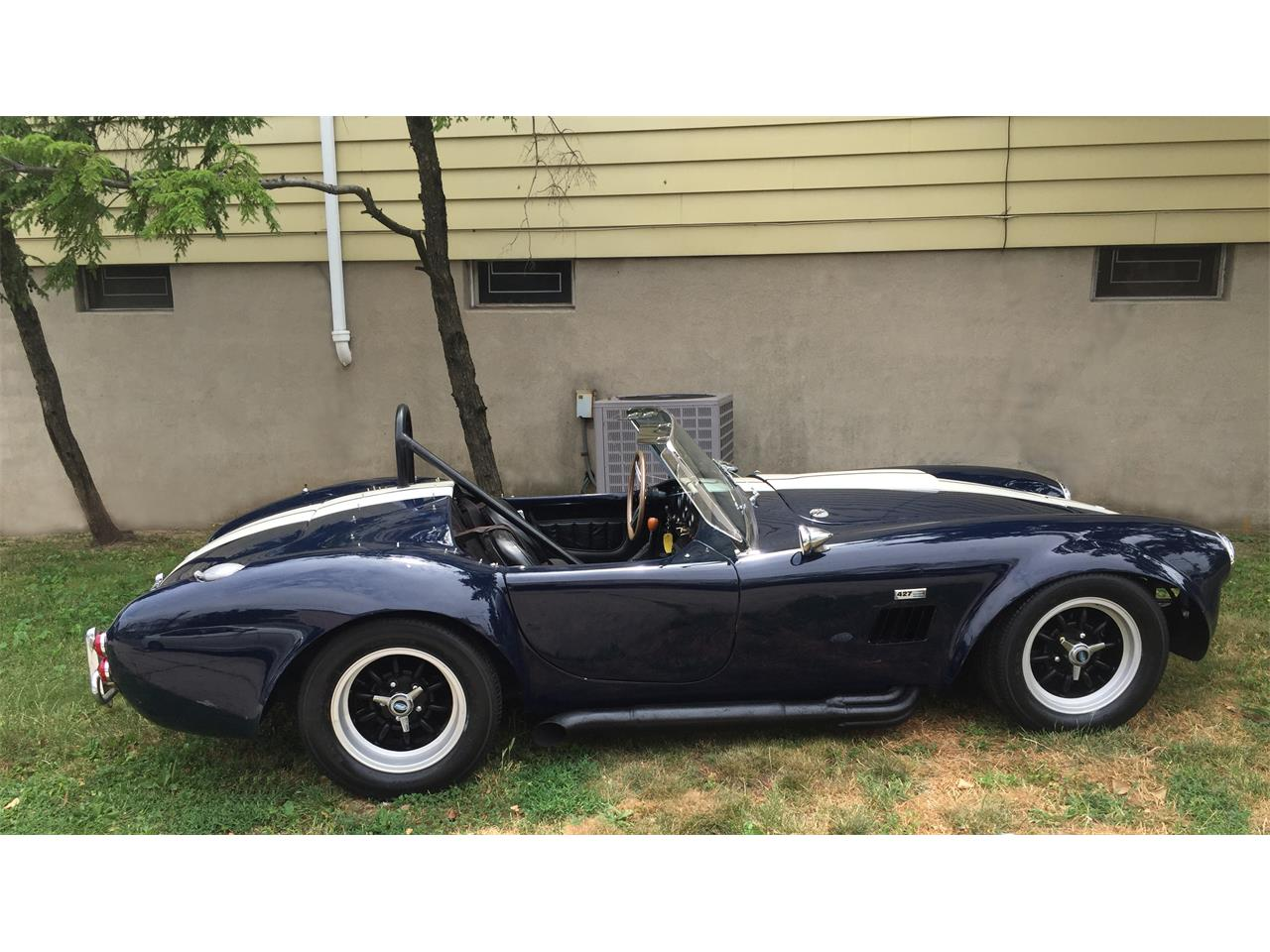 Large Picture of '65 Shelby Cobra  - J3R6