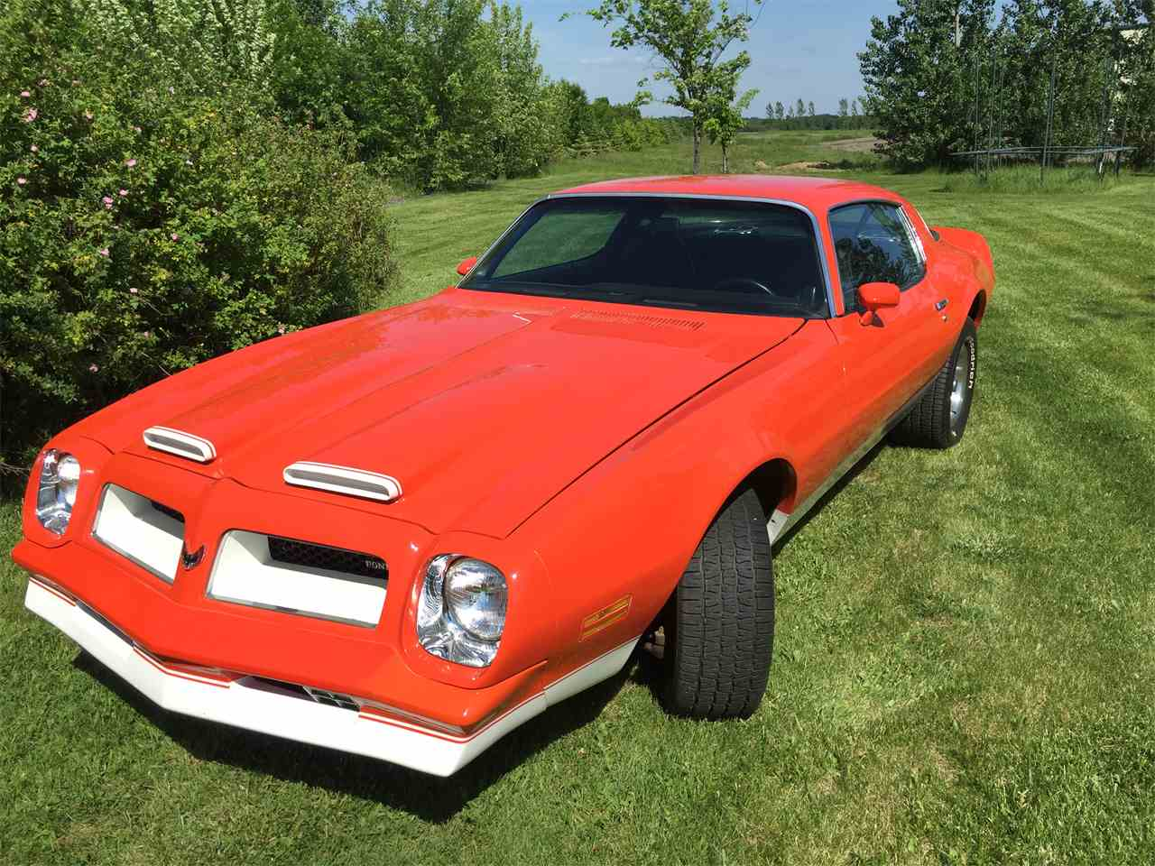 Large Picture of '76 Firebird Formula - J2V6