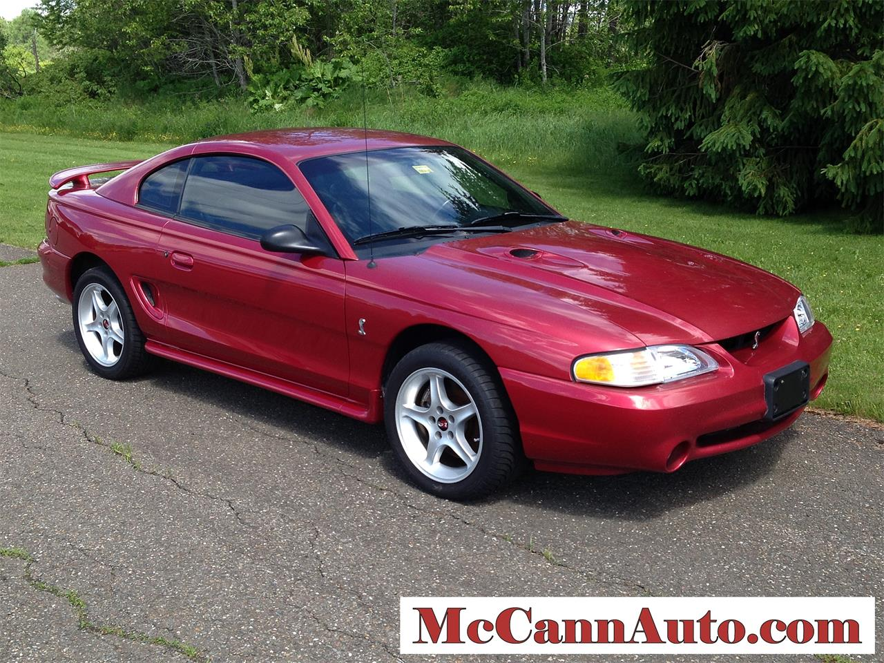 Large picture of 1998 ford mustang cobra 24995 00 j46n