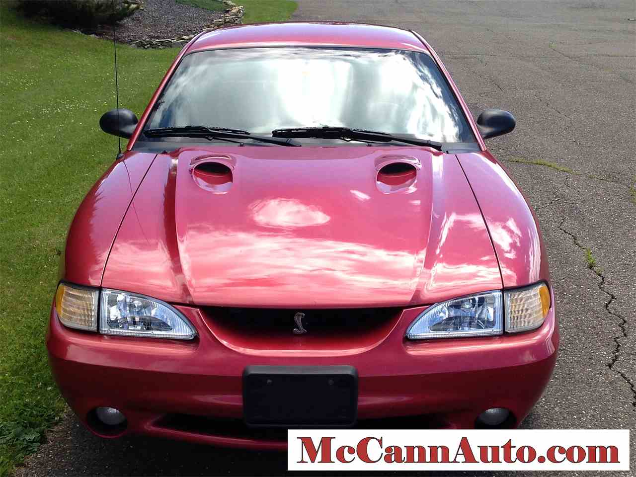 Large Picture of '98 Mustang Cobra - J46N