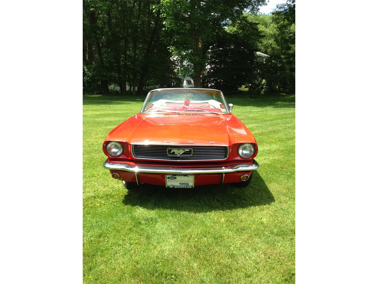 Large Picture of Classic 1966 Mustang located in Stamford Connecticut - J6KE