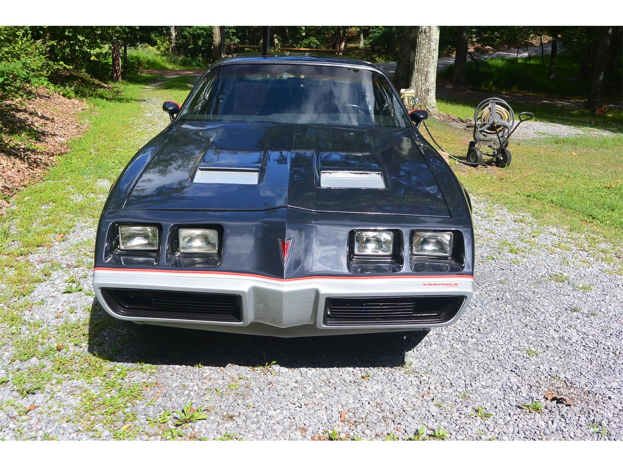 Large Picture of '81 Pontiac Firebird Formula - $16,000.00 - J6SR
