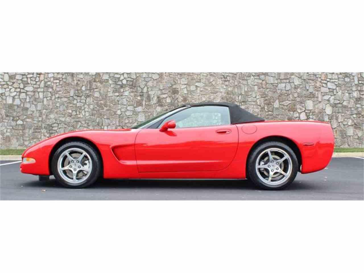Large Picture of '03 Corvette - JAER