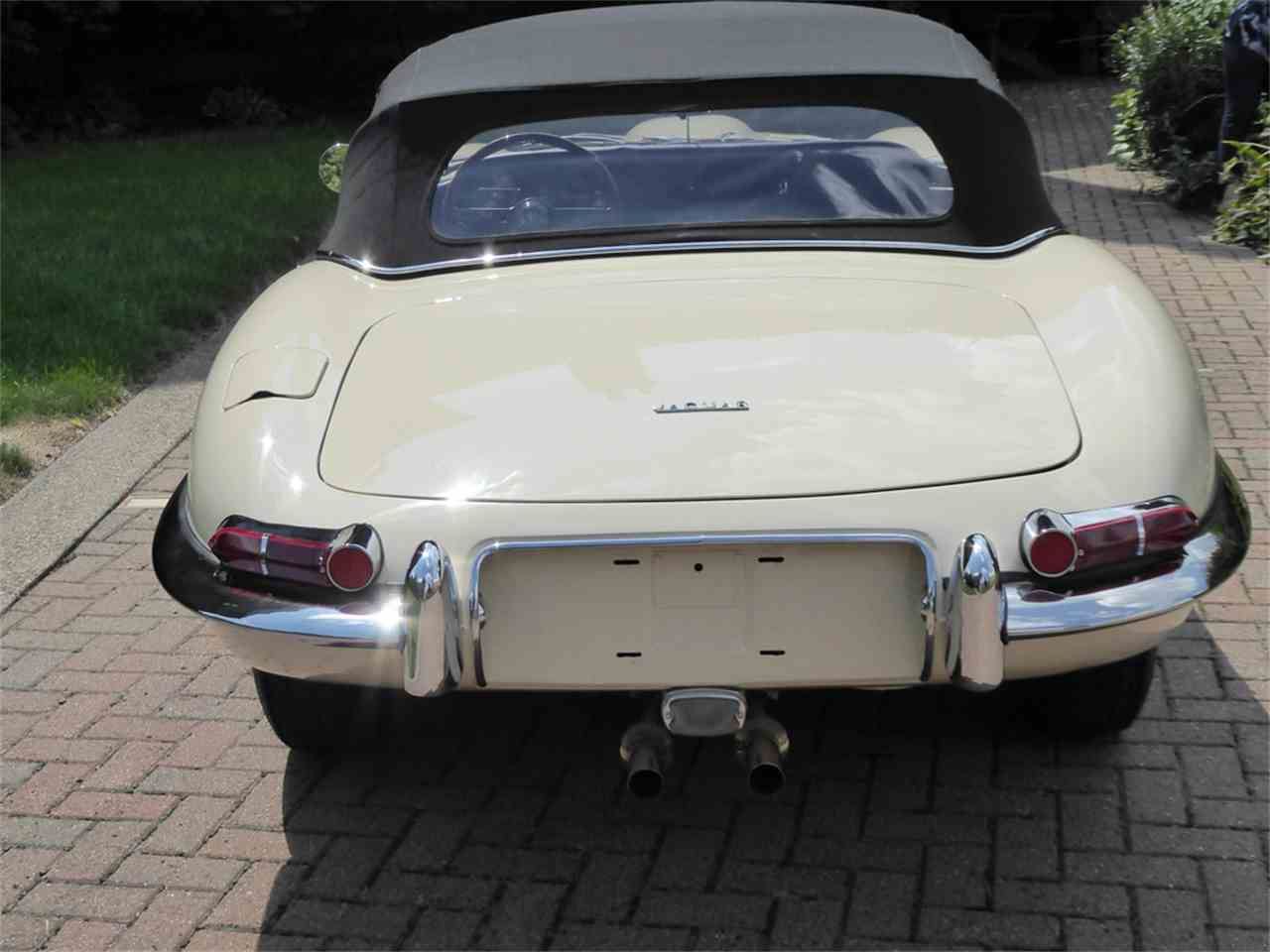 Large Picture of '63 E-Type - JC84