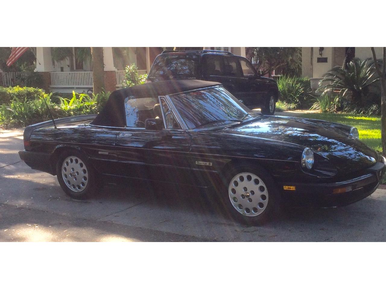 Large Picture of 1988 Alfa Romeo Spider Quadrifoglio located in Florida - $15,900.00 Offered by a Private Seller - JDBJ