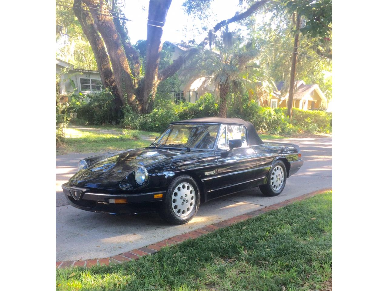 Large Picture of '88 Spider Quadrifoglio located in Jacksonville Florida Offered by a Private Seller - JDBJ
