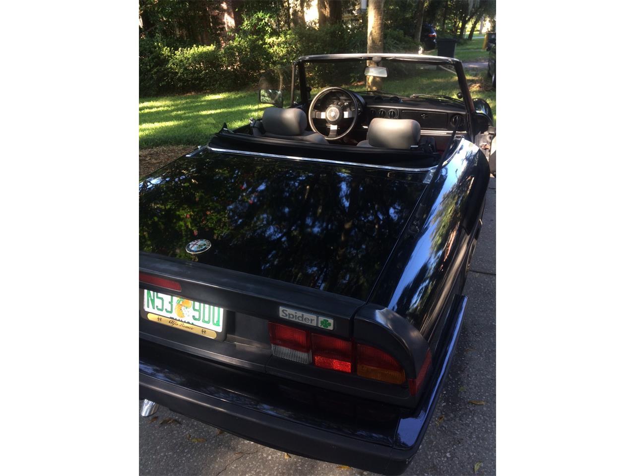 Large Picture of 1988 Alfa Romeo Spider Quadrifoglio located in Florida - $15,900.00 - JDBJ