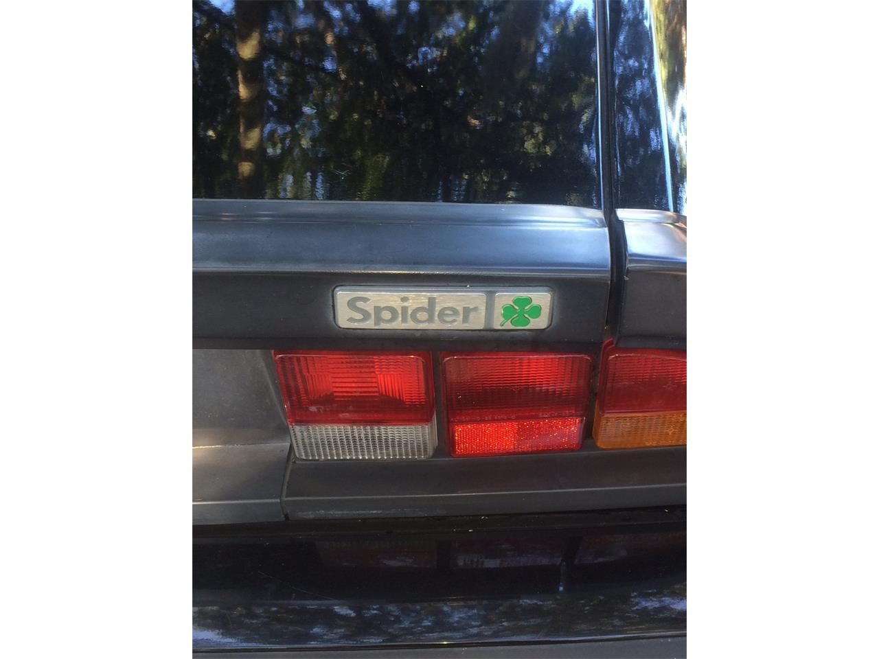 Large Picture of '88 Spider Quadrifoglio - JDBJ