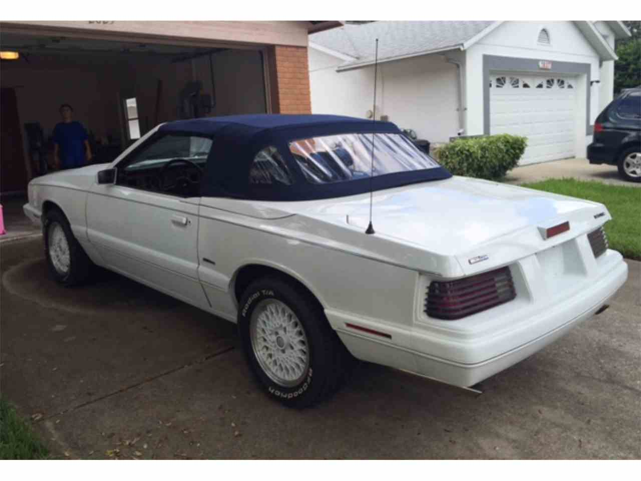 Large Picture of '86 Capri - JGBH