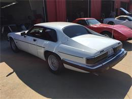 Picture of '92 XJS - JGHZ