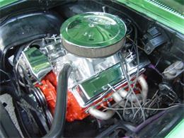 Picture of '71 Nova - JB3N