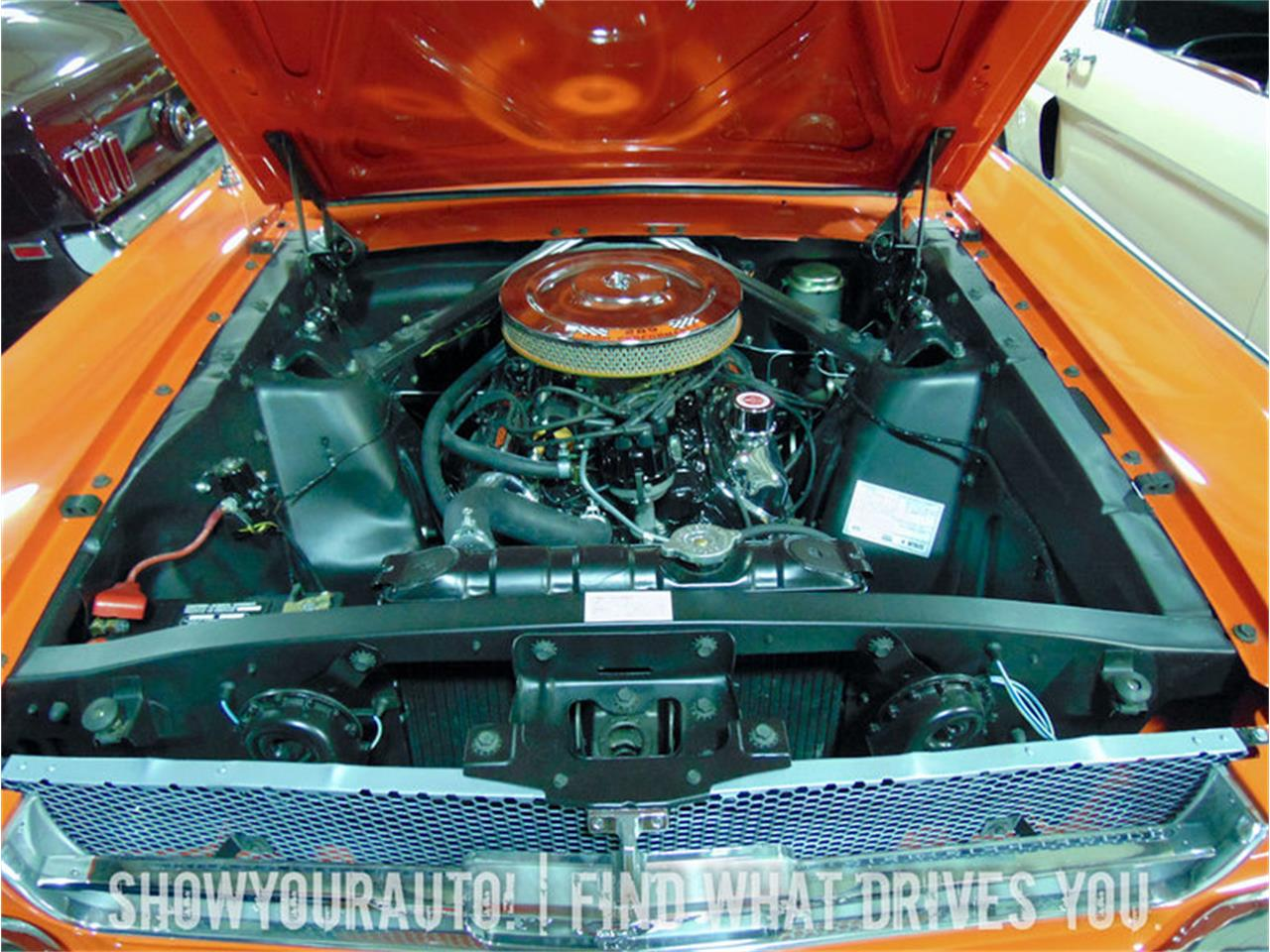 Large Picture of '65 Mustang - JHTV