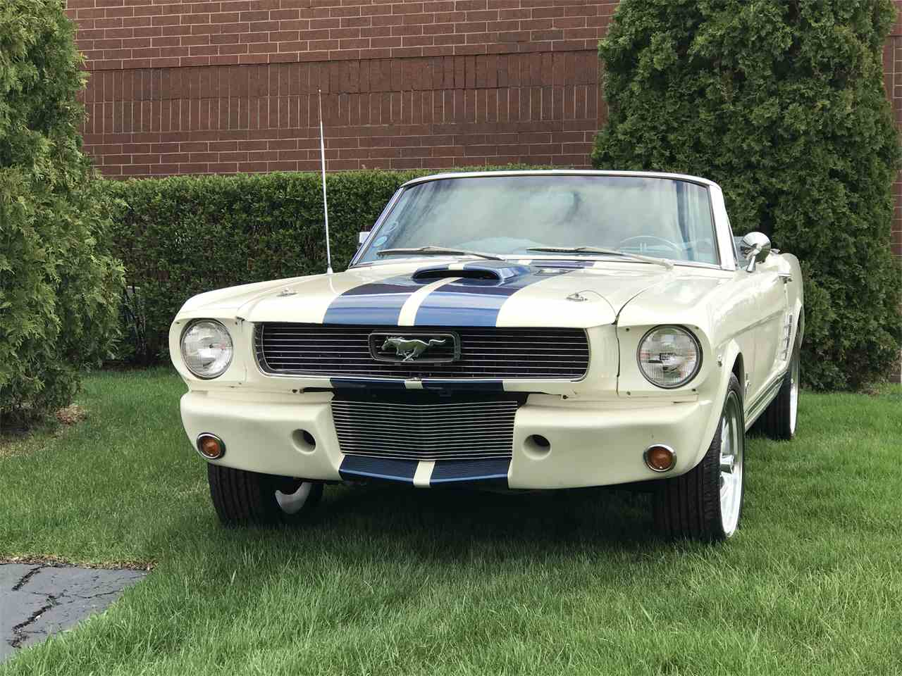 Large Picture of '66 Mustang - JHZC