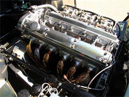 Picture of Classic '51 Jaguar C-Type located in Golden Valley Minnesota - JJEJ