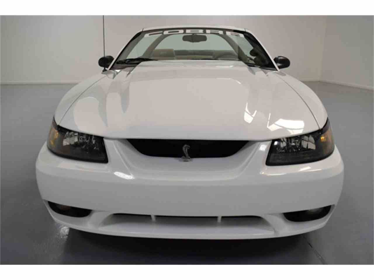 Large Picture of '99 Mustang - JJVA