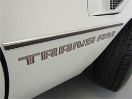 Picture of '78 Firebird - JLC2