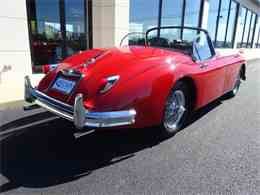 Picture of '59 XK - JIMN