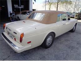 Picture of 1986 Bentley Continental - JUM8