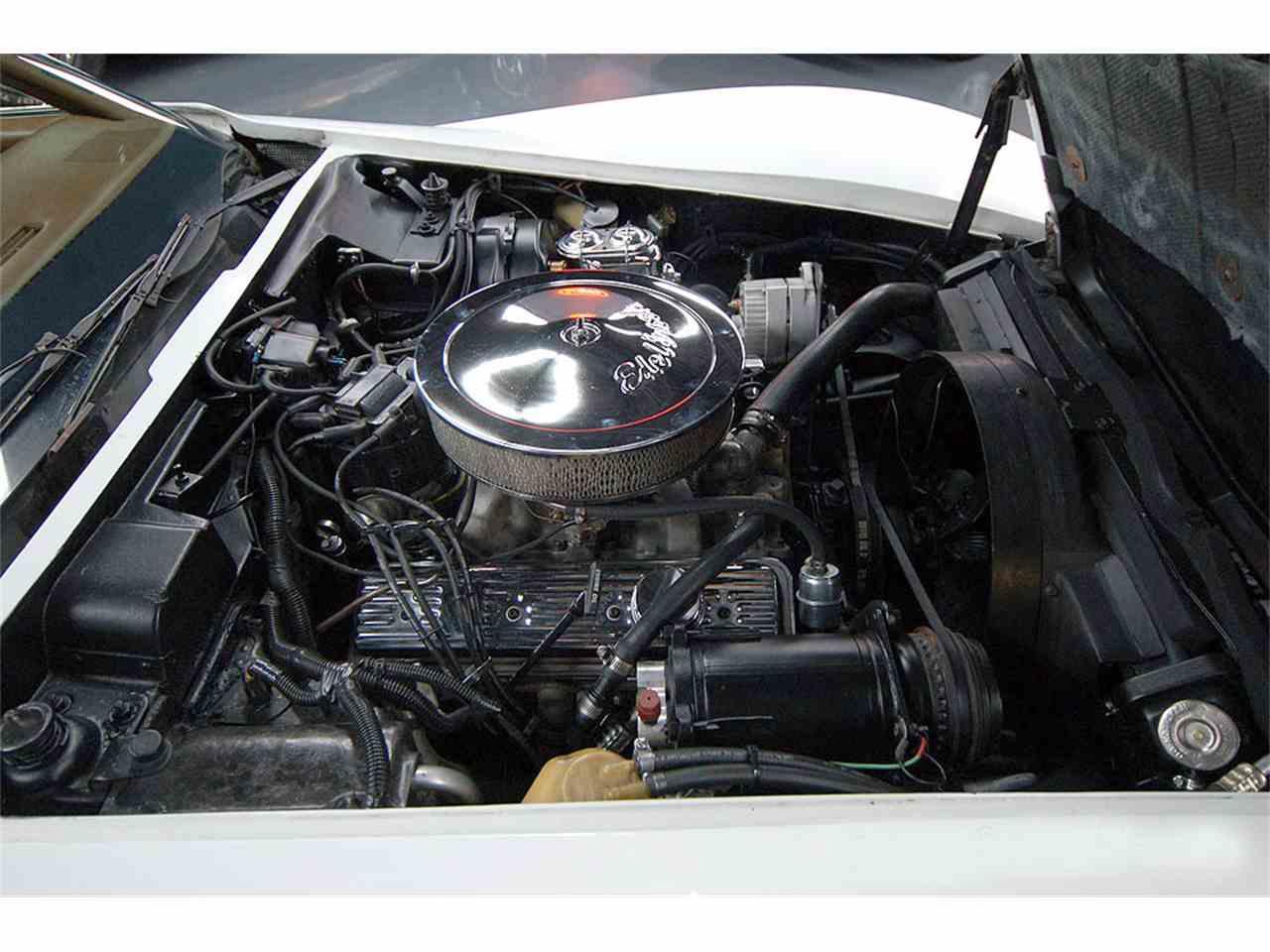 Large Picture of '73 Corvette - JVF3