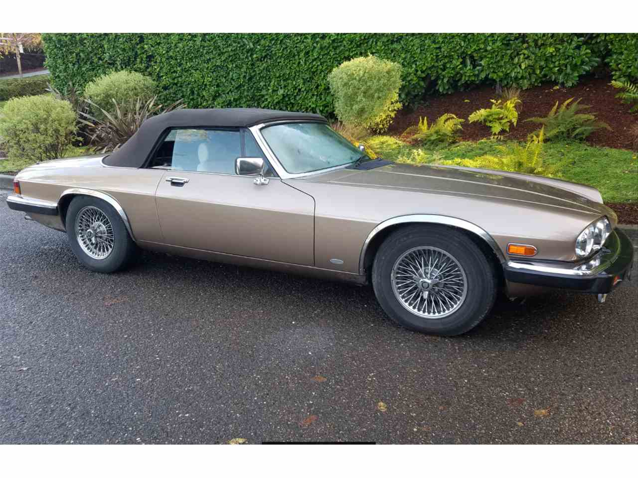 Large Picture of '88 XJS - JWDG