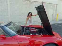 Picture of '79 Corvette - K0JD