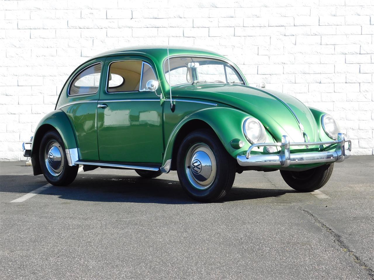 4855432-1957-volkswagen-beetle-std.jpg