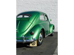 Picture of '57 Beetle - K2KV