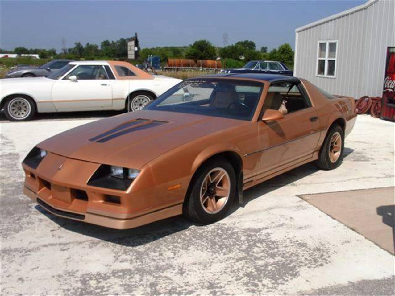 Large Picture of '82 Camaro - K409