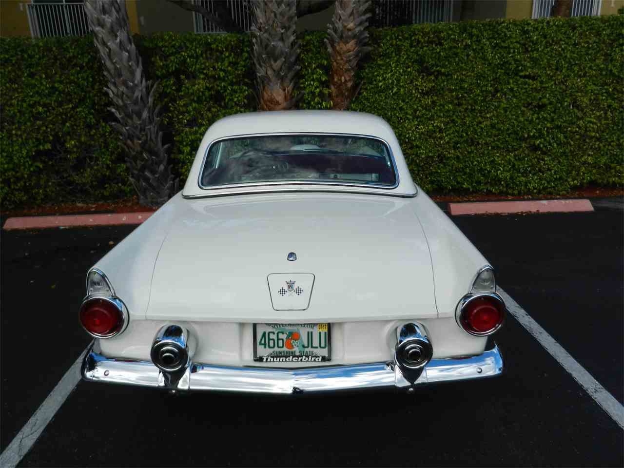 Large Picture of '55 Thunderbird - K5GH