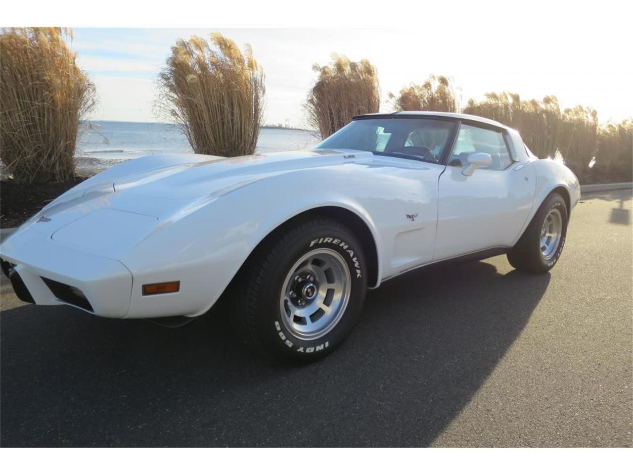 Large Picture of '79 Corvette Offered by Napoli Classics - K8EY