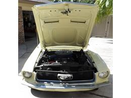 Picture of 1967 Ford Mustang located in Neptune Beach Florida - K8GW