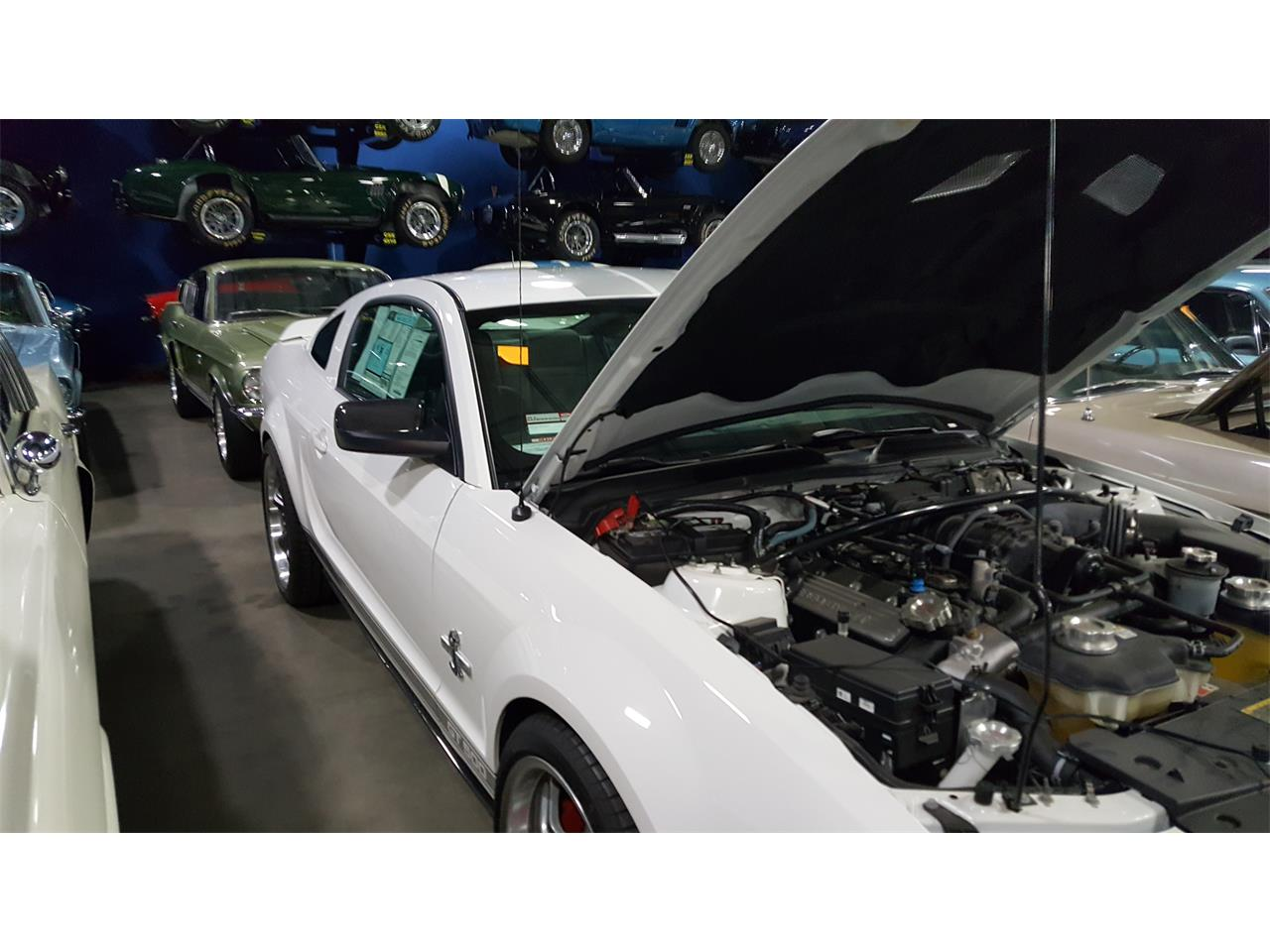 Large Picture of 2007 Shelby GT500 located in Windsor California - K95C
