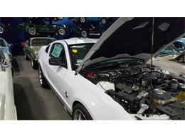 Picture of '07 GT500 - $69,000.00 Offered by Denbeste Motorsports - K95C