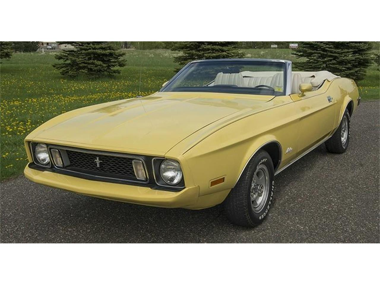 Large Picture of '73 Mustang located in Rogers Minnesota - $19,950.00 Offered by Ellingson Motorcars - K5R9