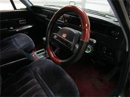 Picture of '91 Century - K5VK