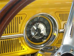 Picture of '62 Beetle - KB9X