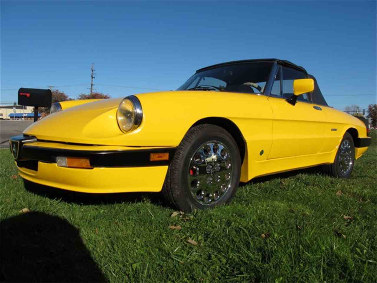 Large Picture of '86 Spider - KCDF