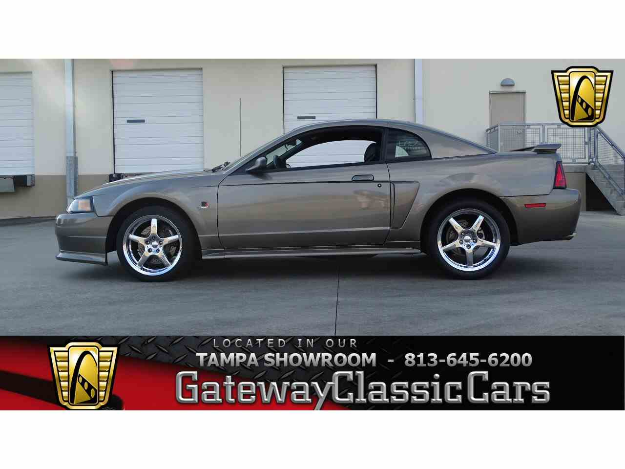 Large Picture of '01 Mustang - KDX4
