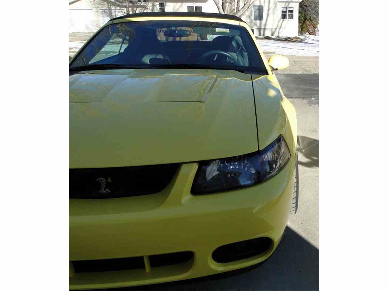Large Picture of '03 Mustang - KGRH