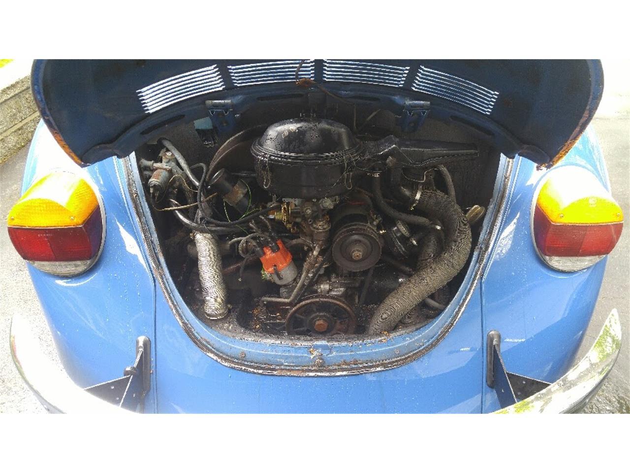 Large Picture of '73 Super Beetle - KDG4